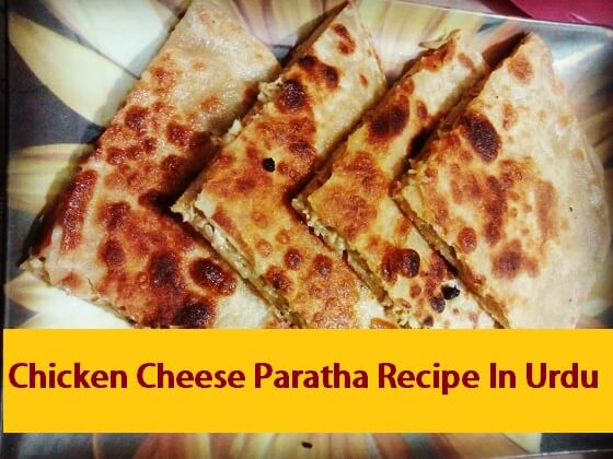 Chicken Cheese Paratha Recipe In Urdu