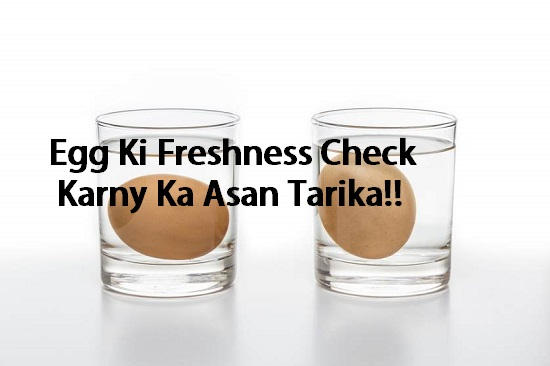 How to check the freshness of egg