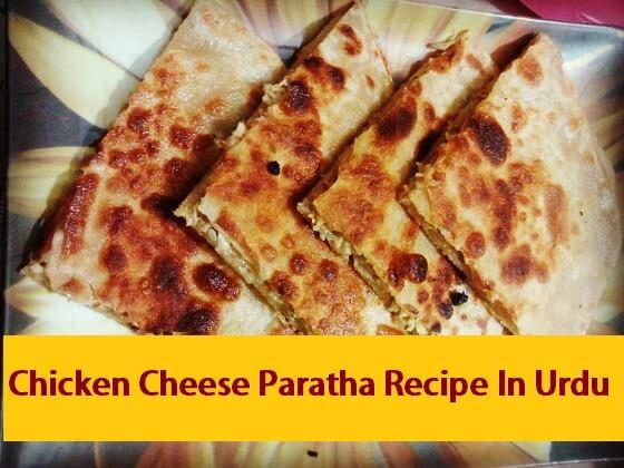 Chicken Cheese Paratha Recipe In Urdu