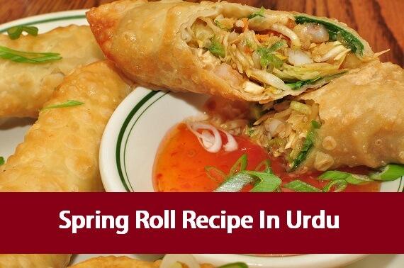Spring Roll Recipe In Urdu